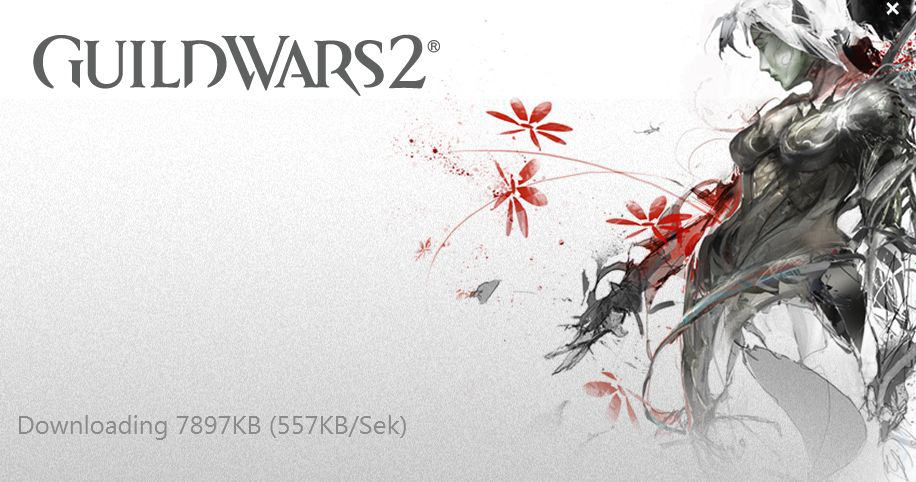 Guild Wars 2 - Launcher