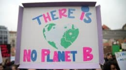 Fridays For Future - Demonstration - Plakat - There Is No Planet B